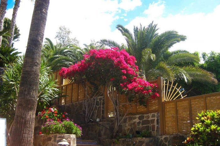 jardines-manglares-de-sur-mantenimiento-1